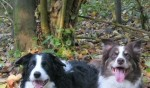 Jaz & Ozzi In Woods